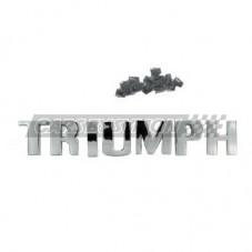 """LETRAS """"TRIUMPH"""" TRIUMPH TR3A DELANTERAS"""